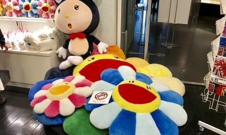 Takashi Murakami Flower Cushions